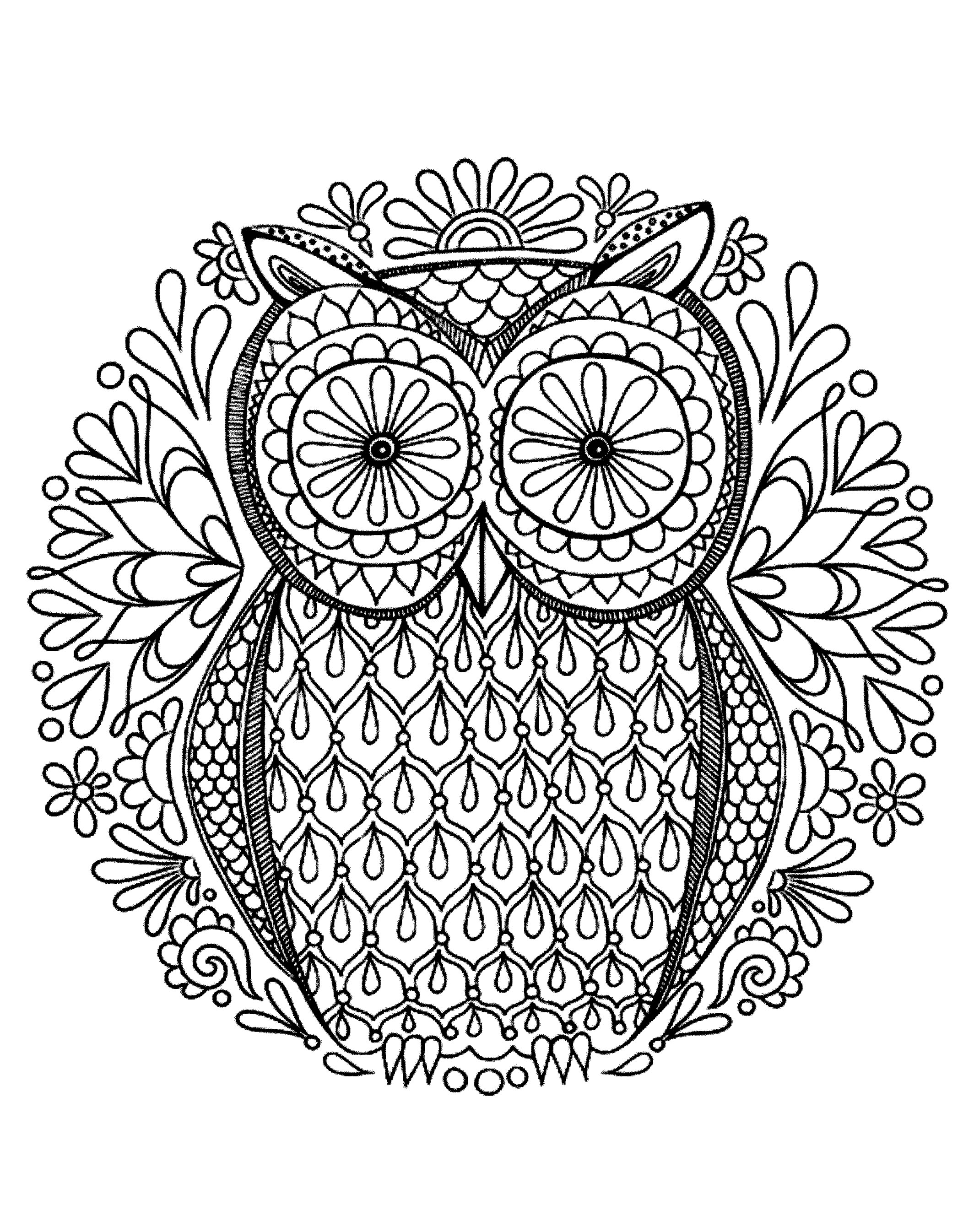 owl adult coloring pages Very simple owl   Owls Adult Coloring Pages owl adult coloring pages