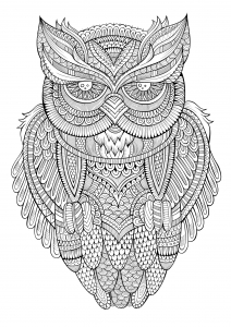 Very Simple Owl Owls Adult Coloring Pages