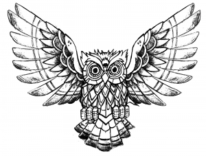 Coloring page owl raw drawing