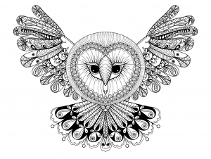 coloring page owl with big head