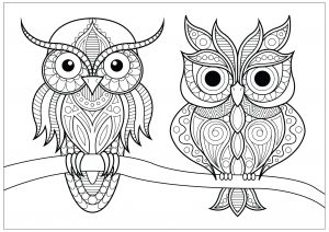 Color by number Halloween | Owl coloring pages, Halloween coloring, Halloween  coloring pages | 212x300