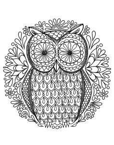 coloring very simple owl