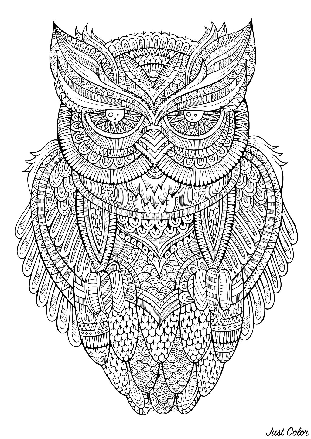 Peaceful Owl - Owls Adult Coloring Pages