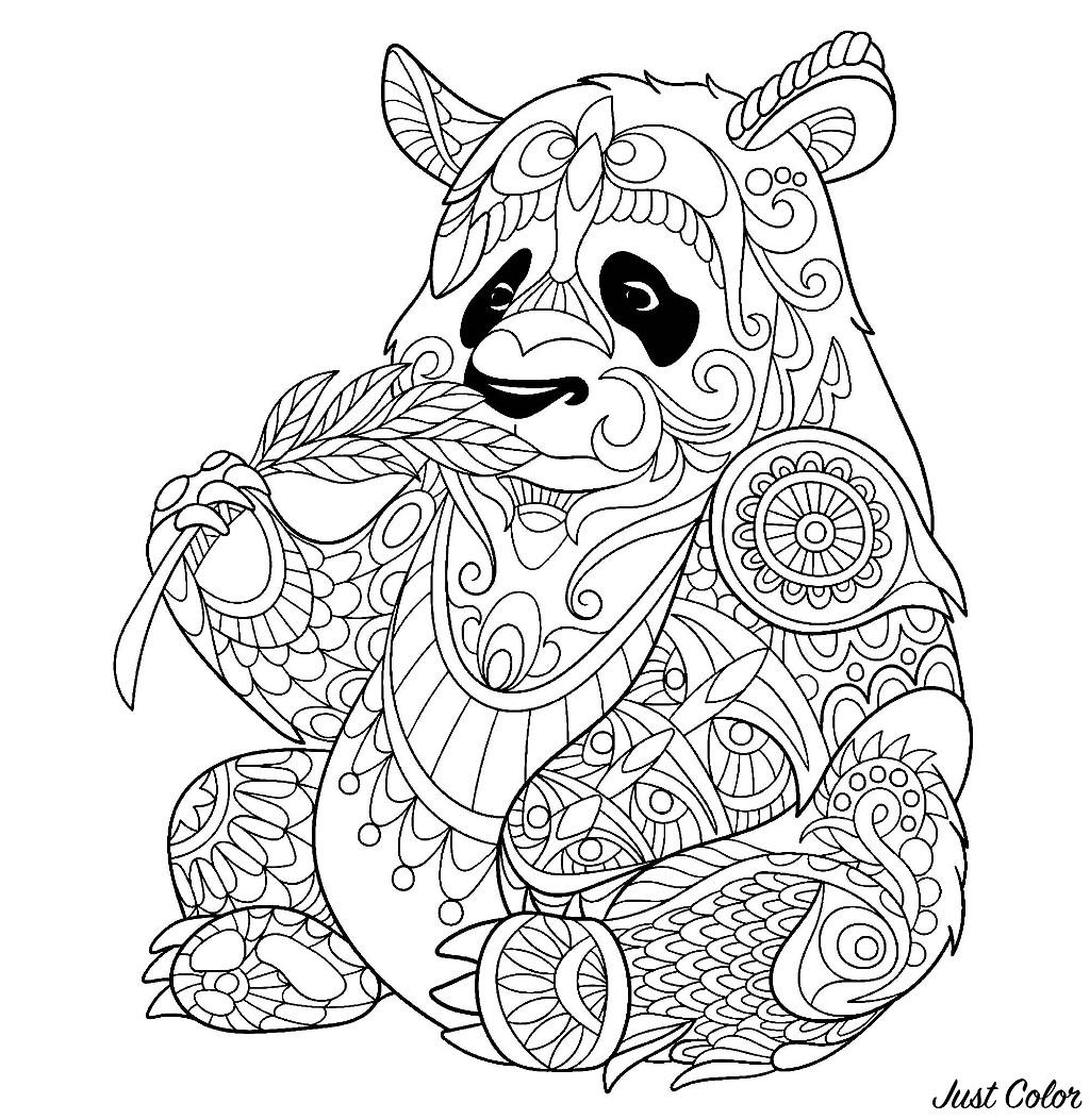 Panda Eating Bamboo Shoot P A Adult Coloring Pages