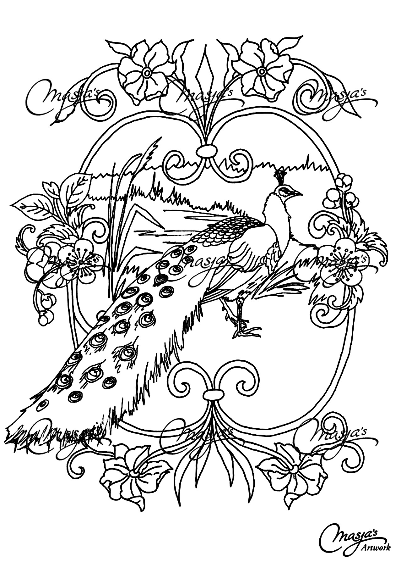 Coloring page of a beautiful peacock