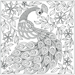 Peacocks Coloring Pages For Adults