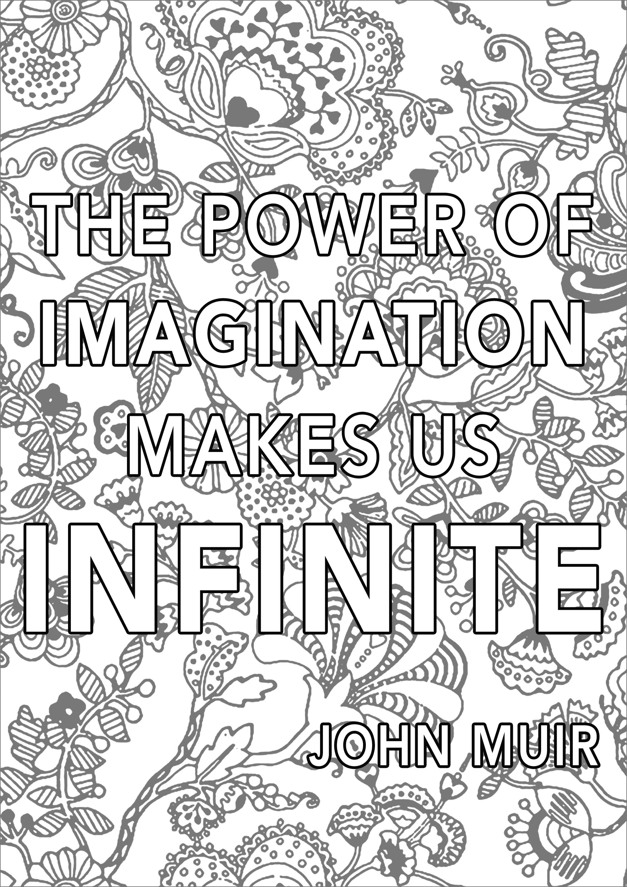 The Power of Imagination makes us Infinite, John Muir