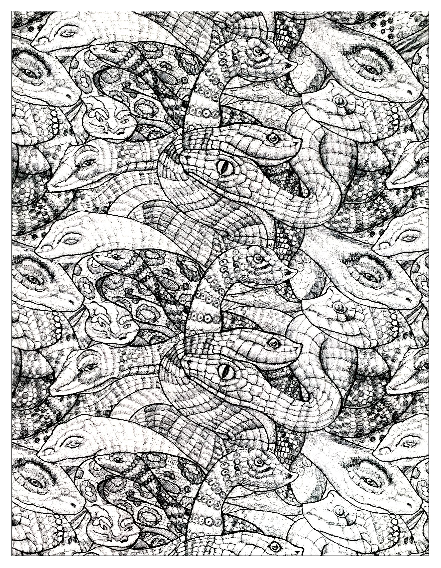 Drawing of entangled snakes with scales drawn in a precise and realistic way