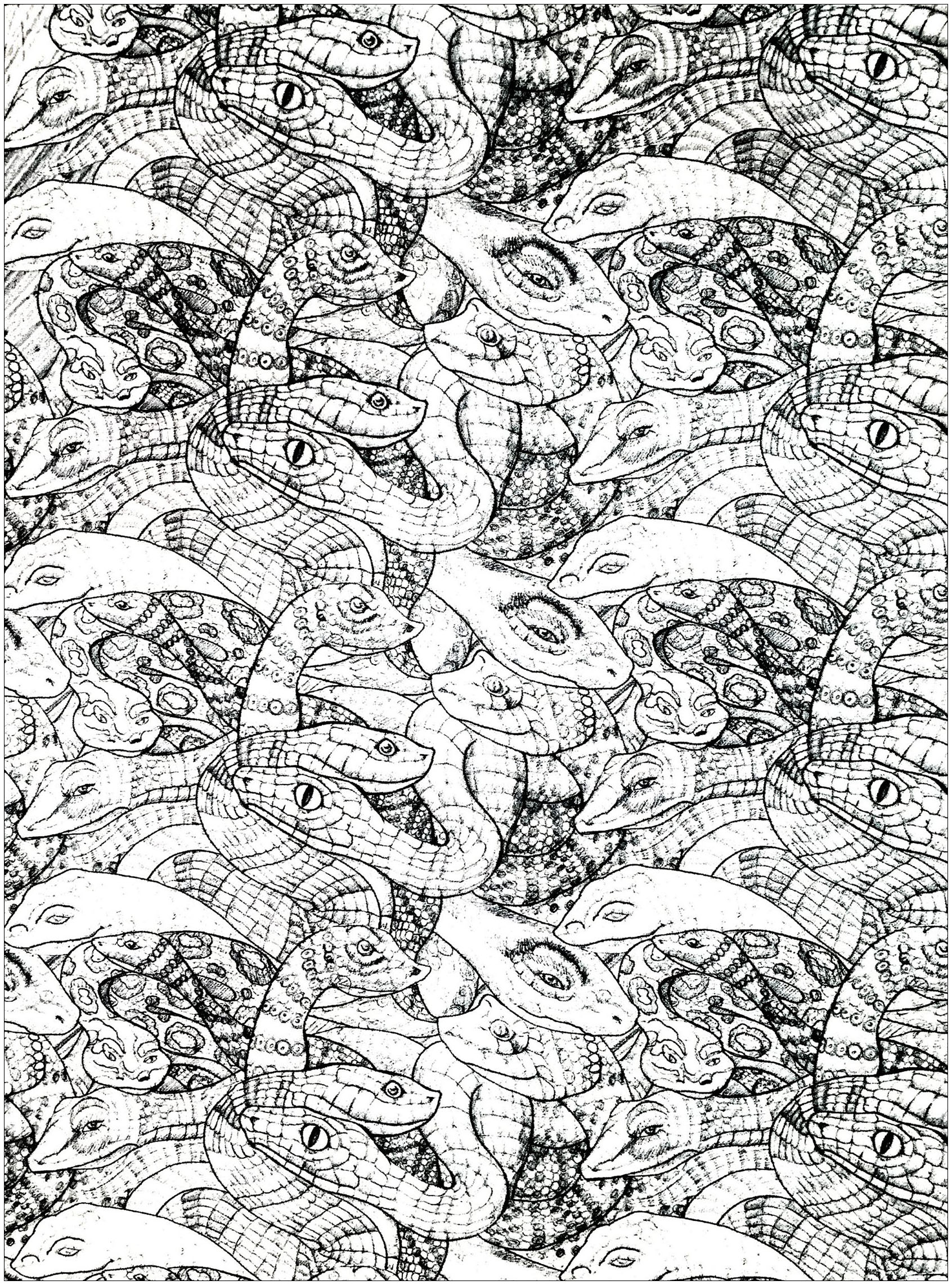 Very complex coloring page with snakes (2nd model)