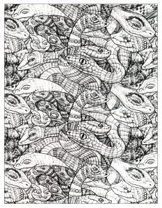Drawing full of Snakes