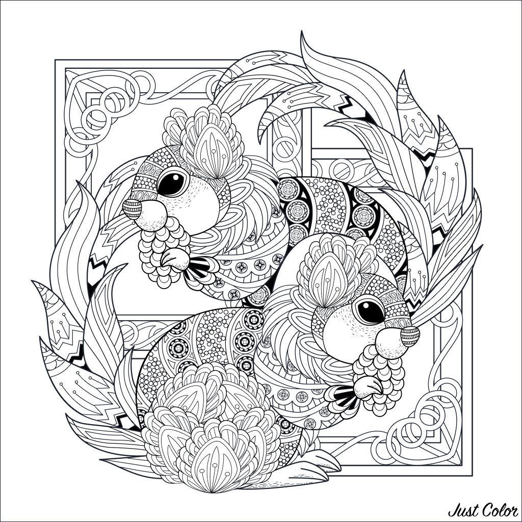 Two lovely squirrels - Squirrels & Rodents Adult Coloring ...