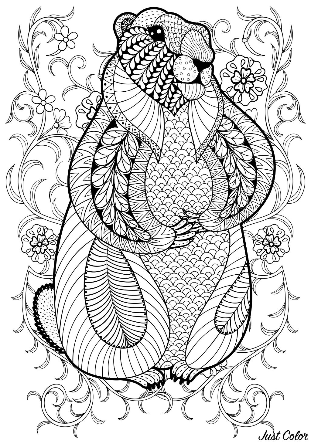 Hand drawn artistic marmot, groundhog in flowers for adult coloring page