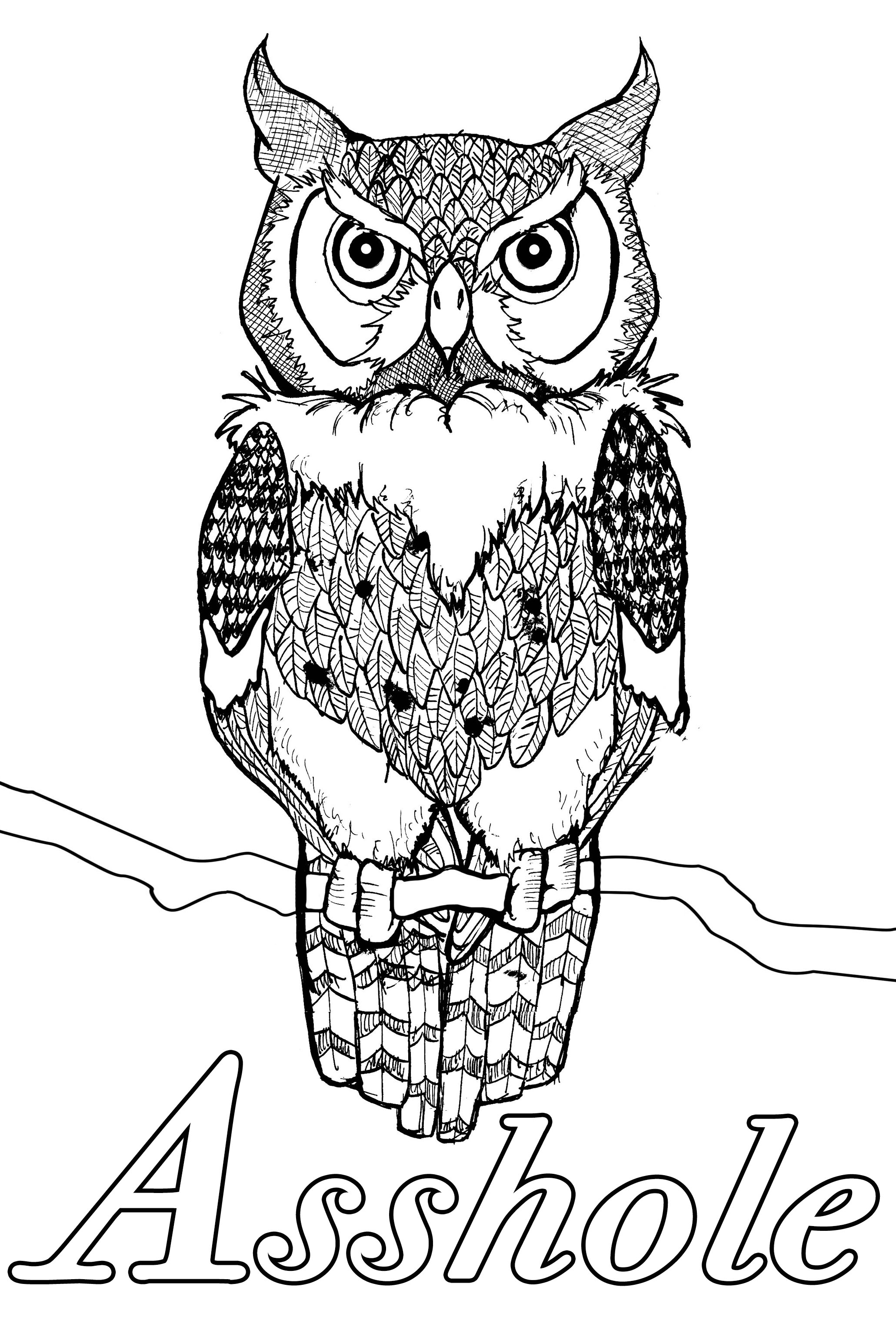Asshole : Swear word coloring page with owl with a serious look