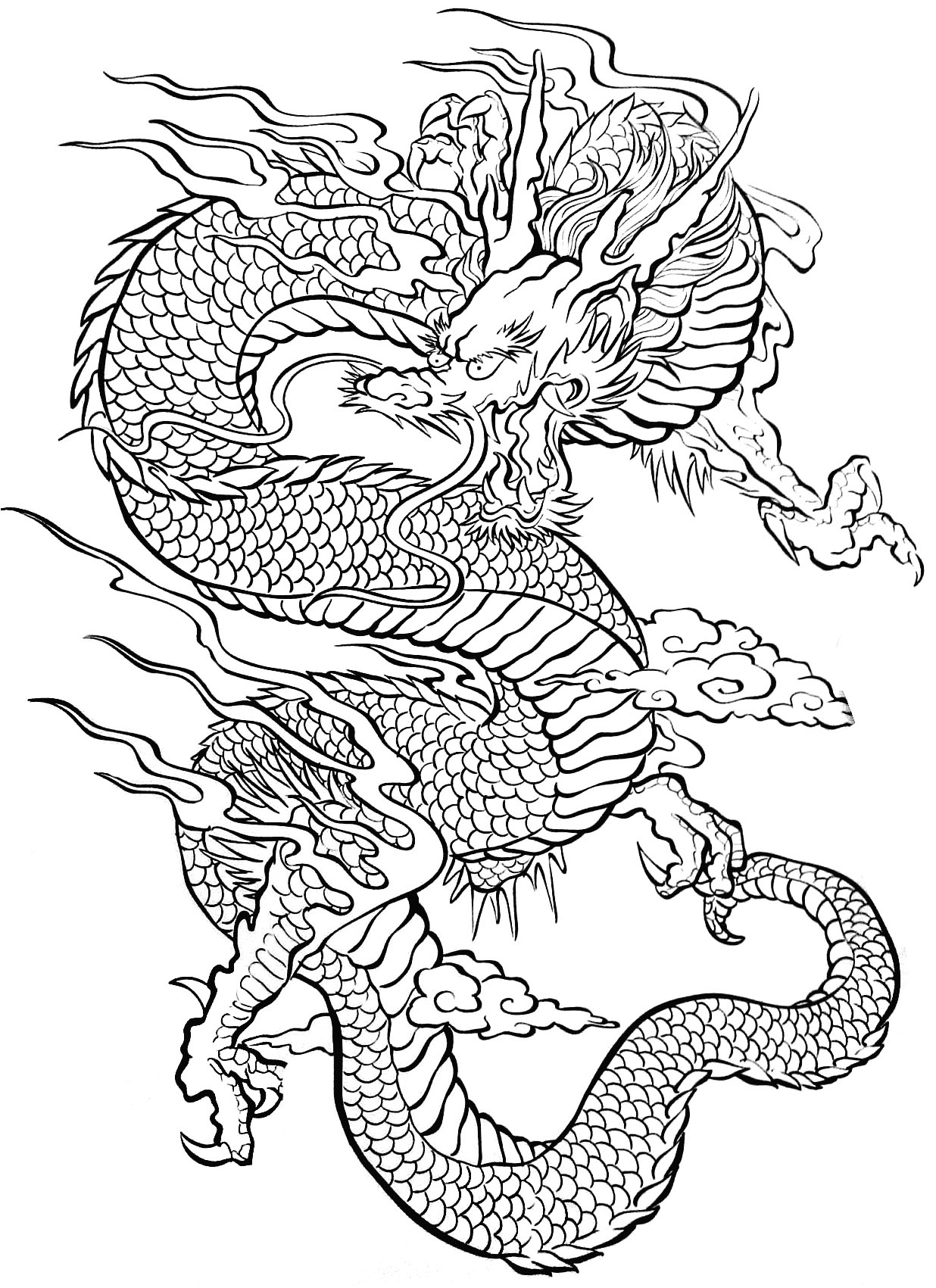 Tattoo dragon tattoos adult coloring pages - Modele dessin dragon ...
