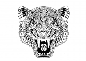 Coloring Page Tiger This Looks At You With His Piercing Eyes