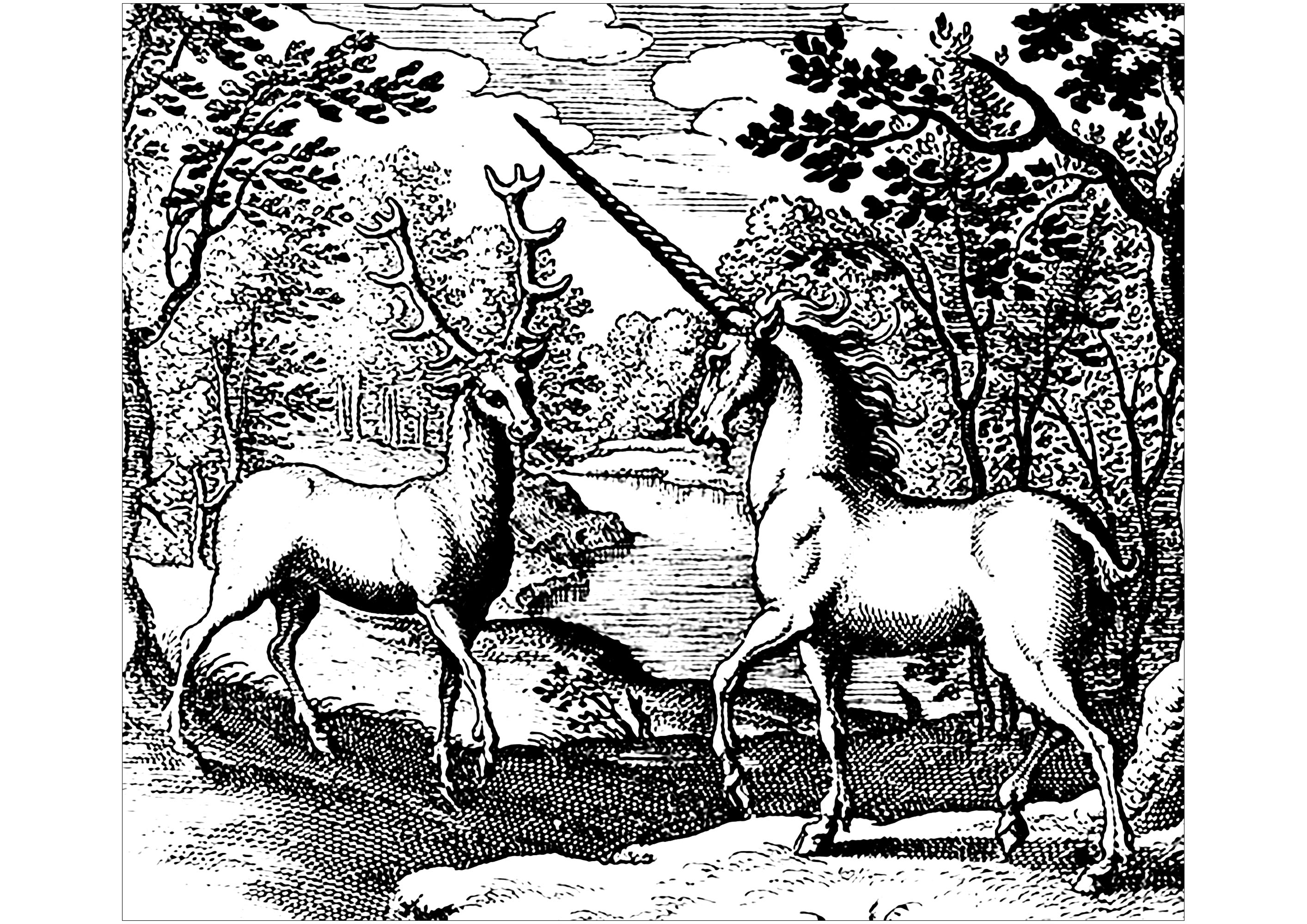 Coloring page created from a woodcut representing an unicorn and a stag  (Hermannum à Sande, around 1677-1678)