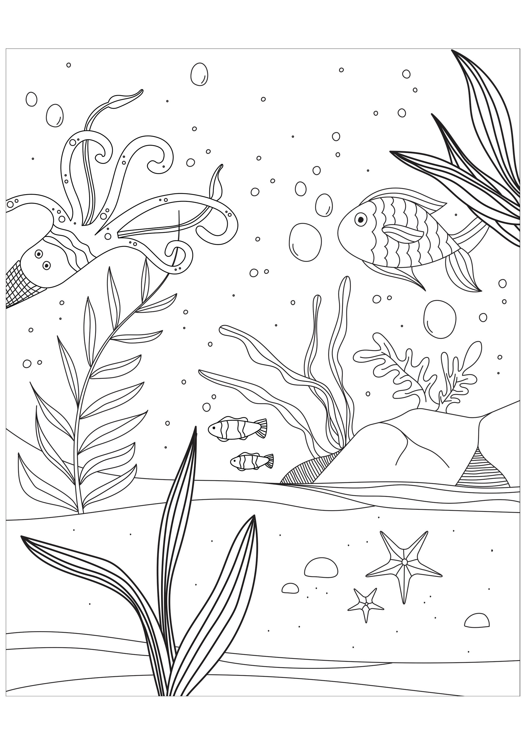Color these fishes, octopus and starfish, present in these seabed. From the website Gifts.com
