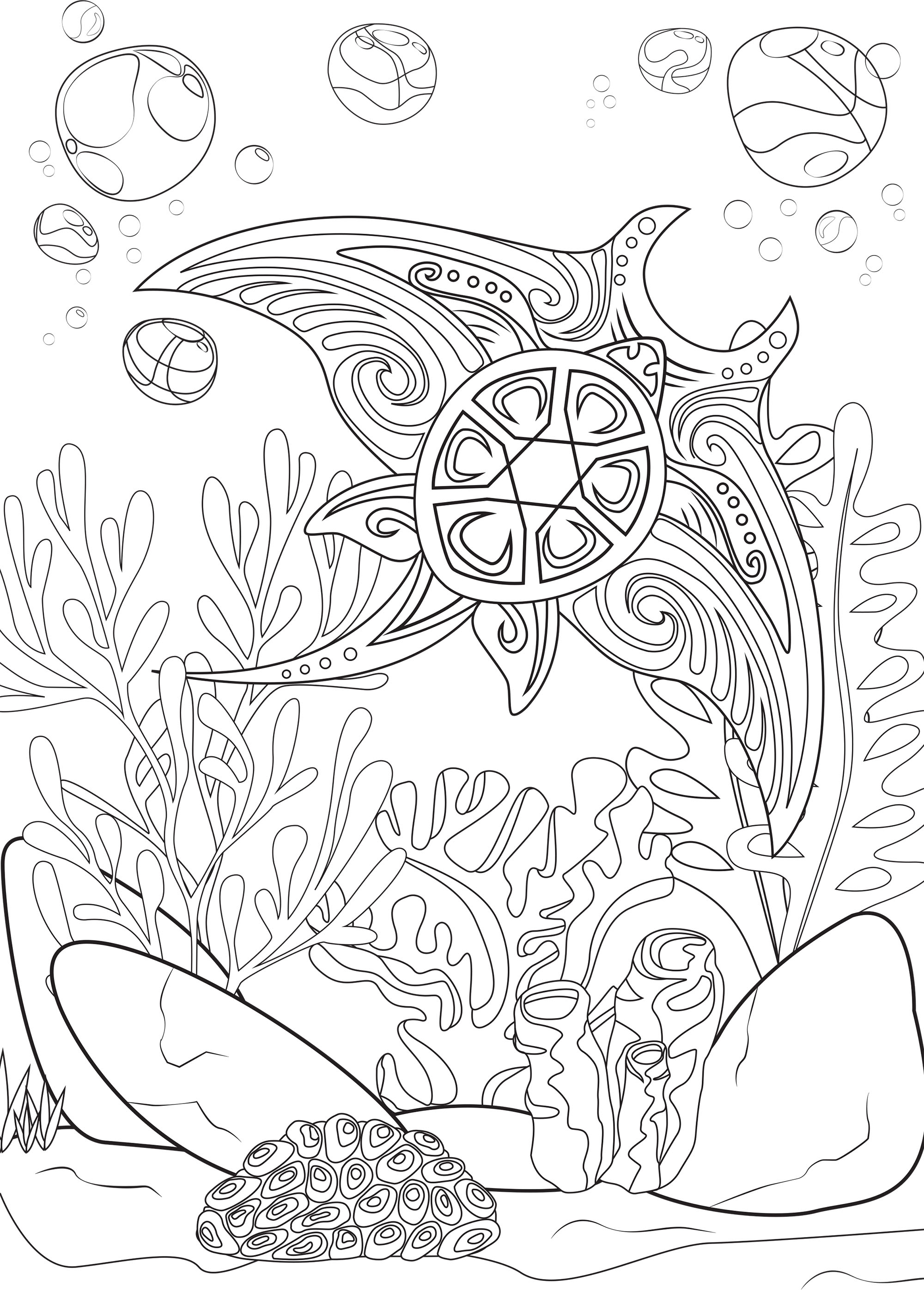 The Univers Of The Manta Ray Water Worlds Adult Coloring