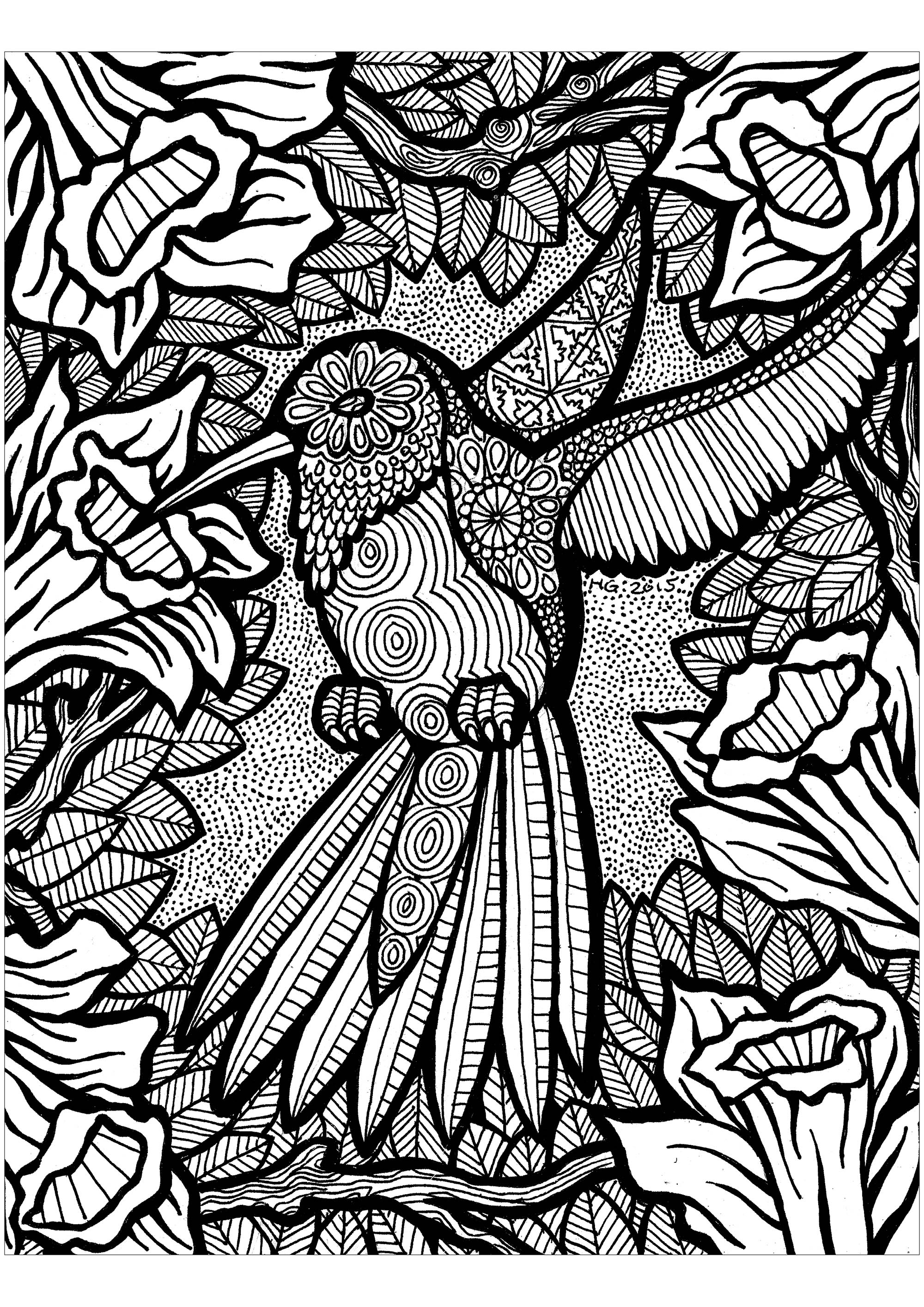 Help this hummingbird to fly, it's missing colors to touch the sky !