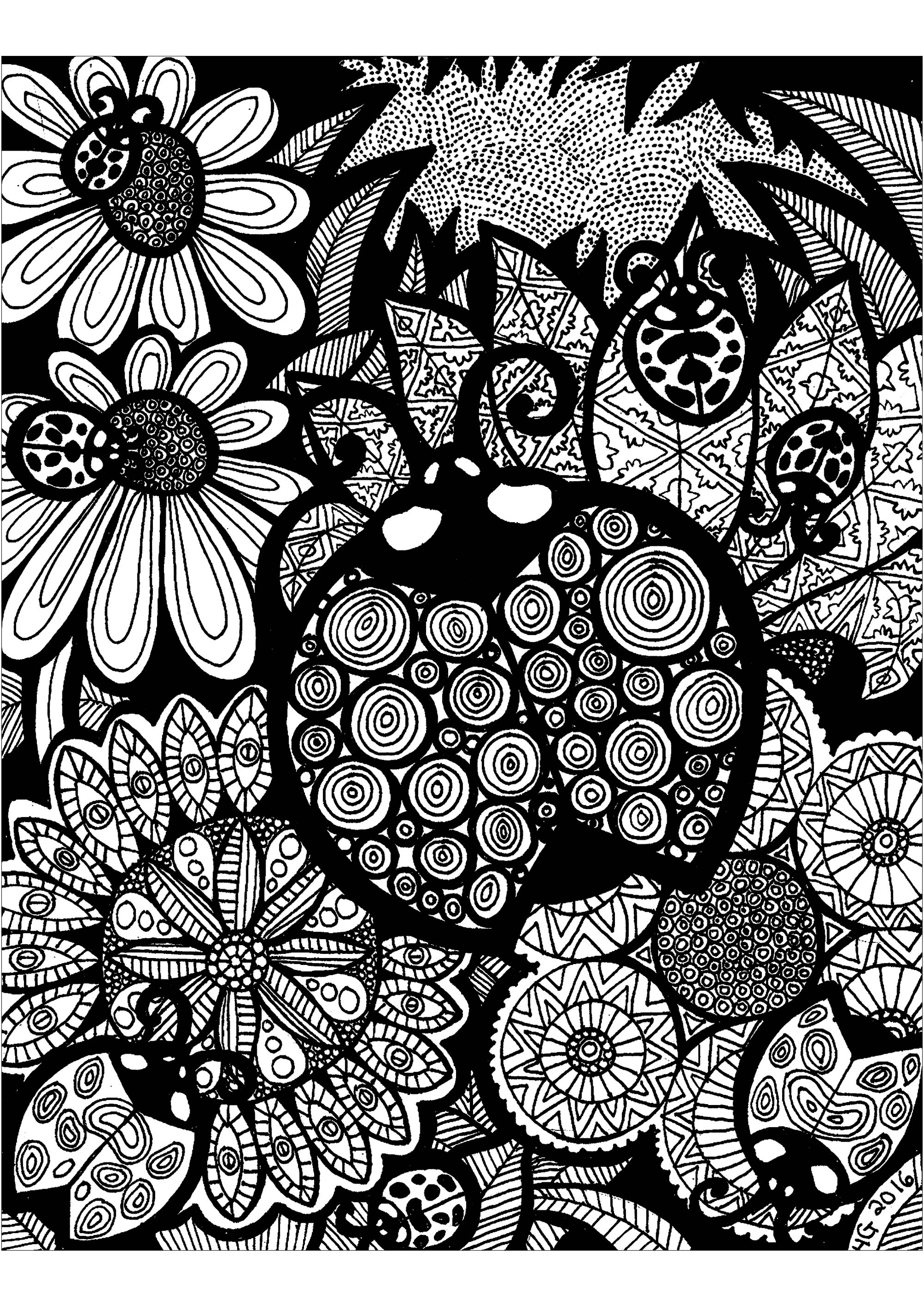 Lines Of The Ladybug Zentangle Adult Coloring Pages