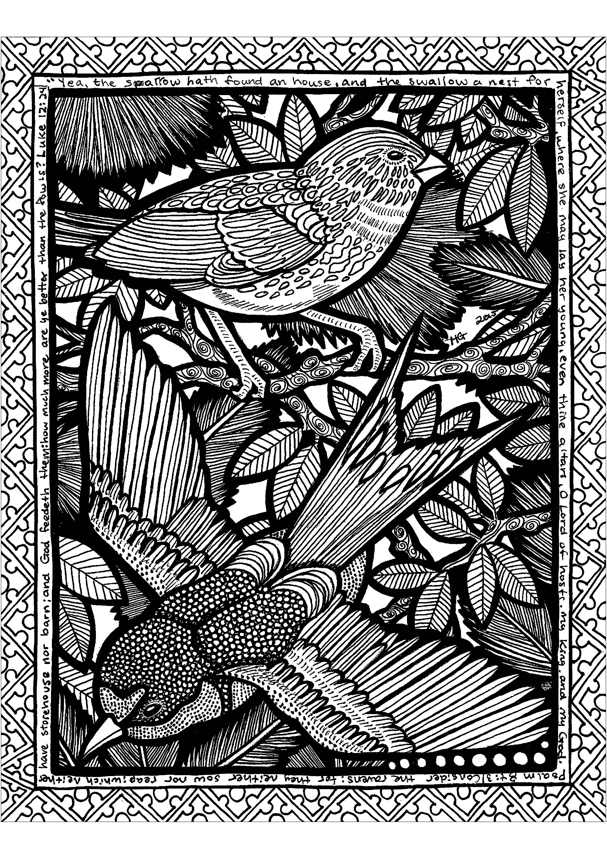 Fly into the Zentangle with those beautiful birds.