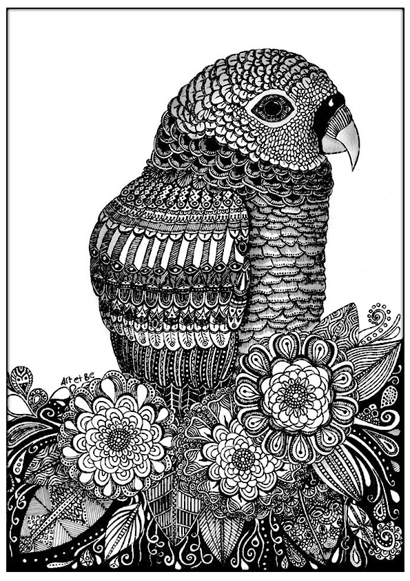 This coloring page repeat like a parrot !