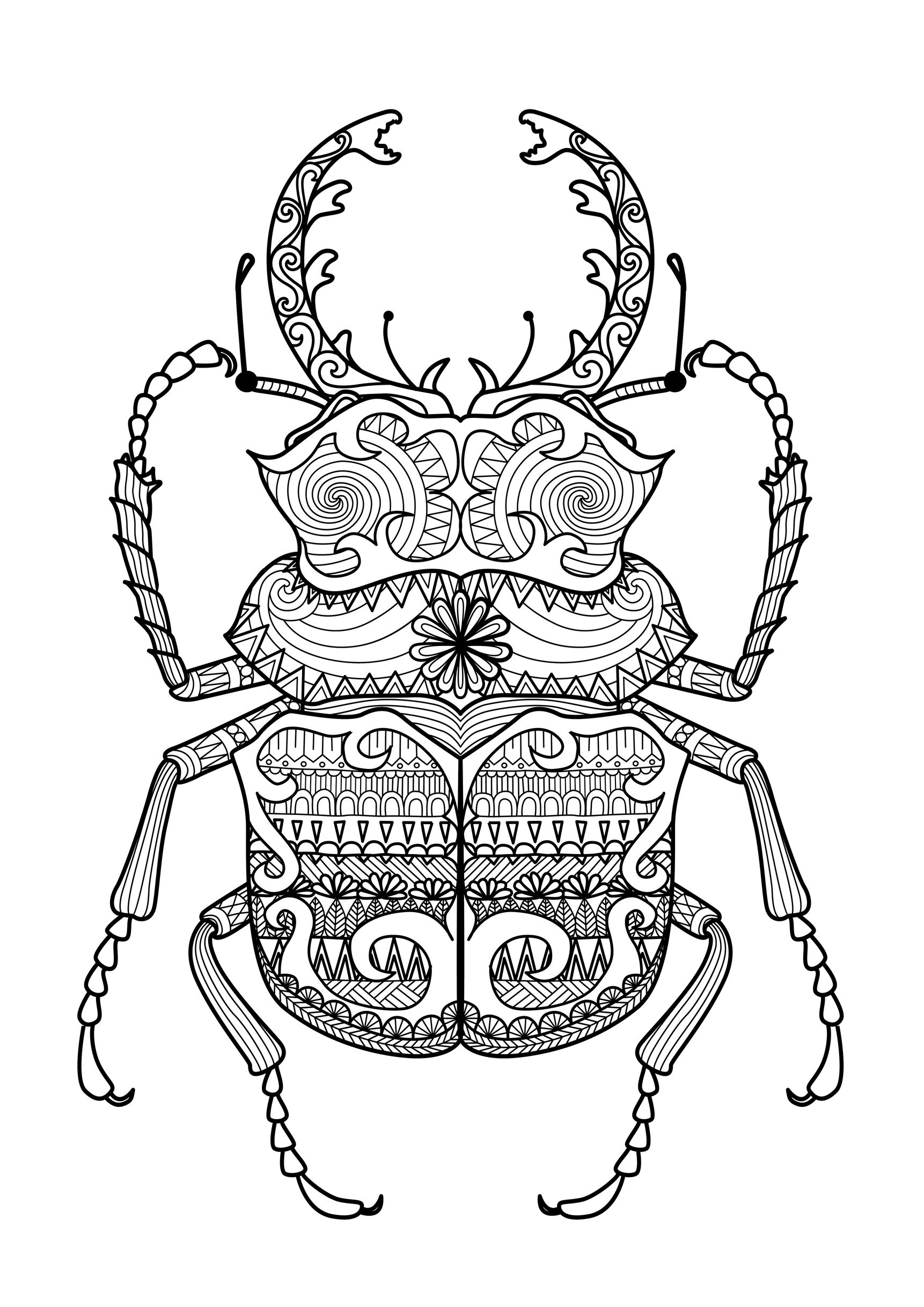 Good Coloring Page : Zentangle Beetle. Incredible Beetle With Extraordinary  Patterns