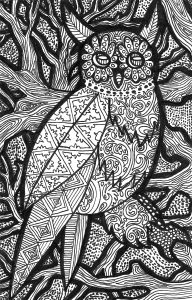 Lines of the owl