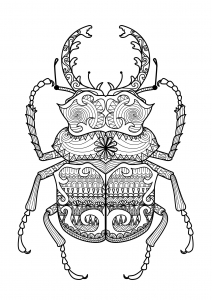 Coloring zentangle beetle by bimdeedee