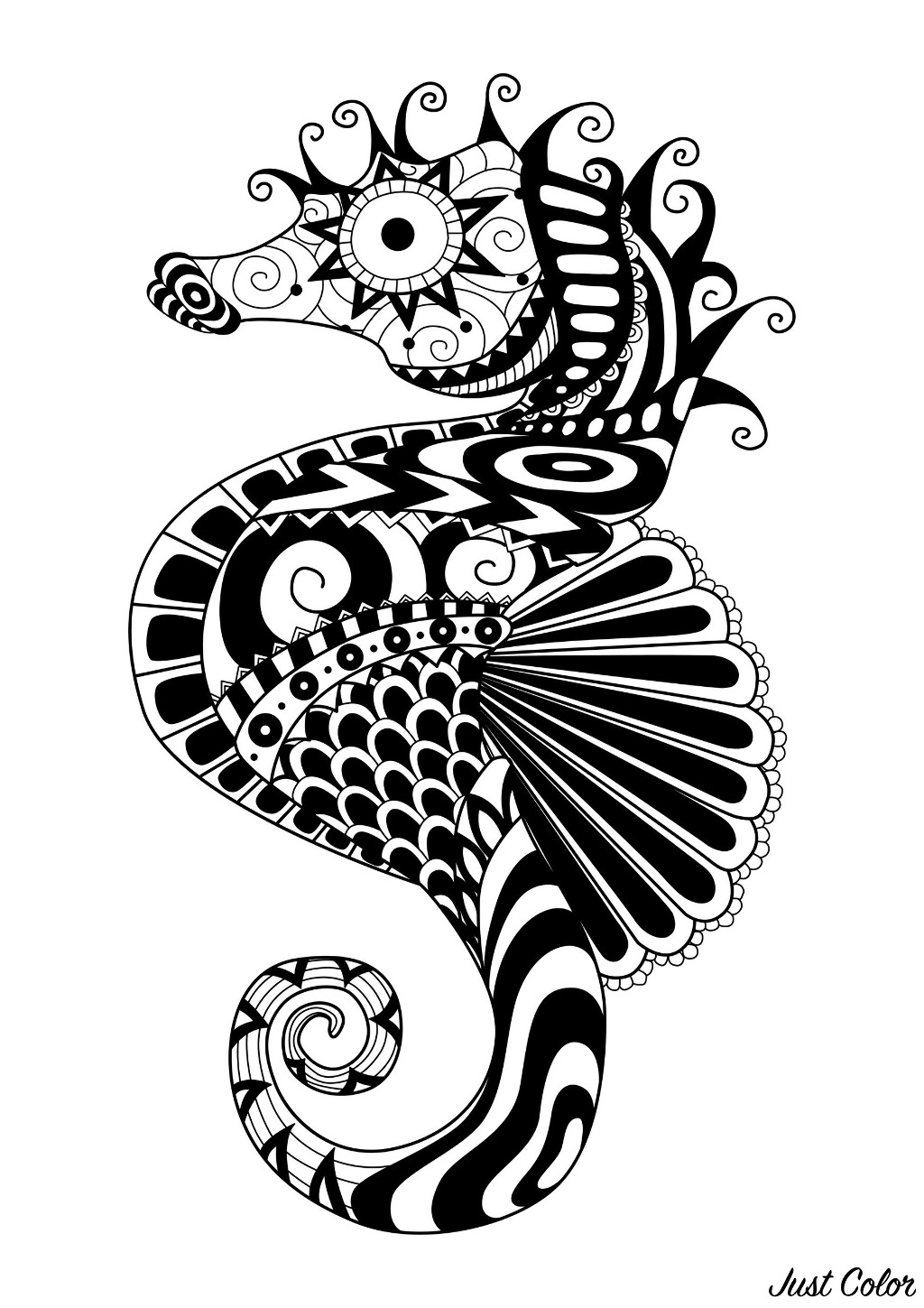 Sea Horse : Zentangle to color