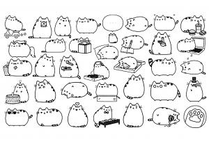 Dessin Animes De Cat Potte