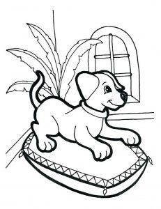 dog free coloring pages printable لم يسبق له مثيل الصور + tier3.xyz   300x231