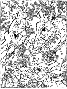 coloring-page-giraffes-to-print-for-free