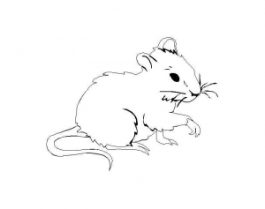 coloring-page-mouse-free-to-color-for-kids