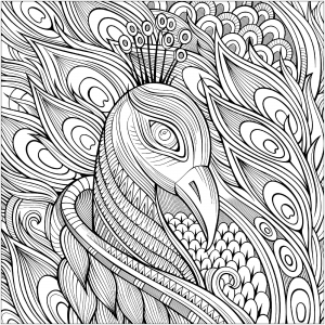 coloring-page-peacocks-to-print-for-free