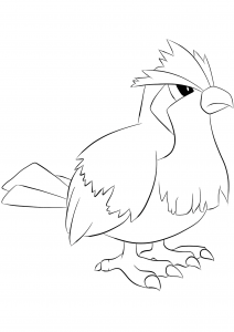 <b>Pidgey</b> (No.16) : Pokemon (Generation I)