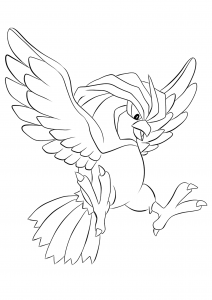<b>Pidgeotto</b> (No.17) : Pokemon (Generation I)