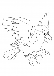<b>Pidgeot</b> (No.18) : Pokemon (Generation I)