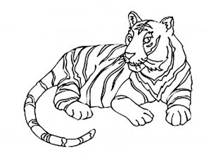 coloring-page-tigers-to-color-for-children