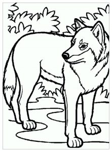 coloring-page-wolf-free-to-color-for-children