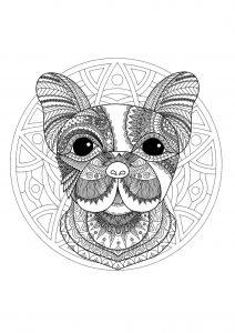 Coloriage Boxer Chien Imprimer.Mandala Tete De Chien Boxer 100 Mandalas Zen Anti Stress