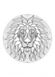 Mandala difficile tete lion 4