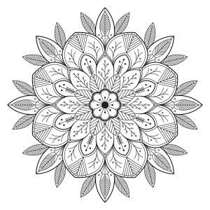 Leaves , 100% Mandalas Zen \u0026 Anti,stress