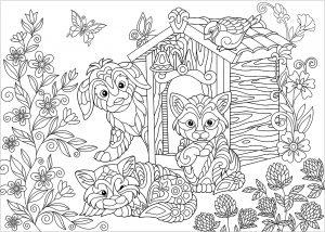 Coloriage De Chat Et Chien Mignon.Mandalas Avec Des Chats Coloriages Difficiles Pour Adultes
