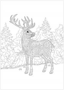 Coloriage de renne de Noël