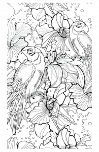 coloriage-adulte-difficile-perroquets