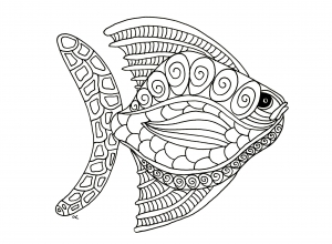 coloriage-poisson-zentangle-etape-1-par-olivier