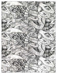 coloriage-adultes-serpents-2