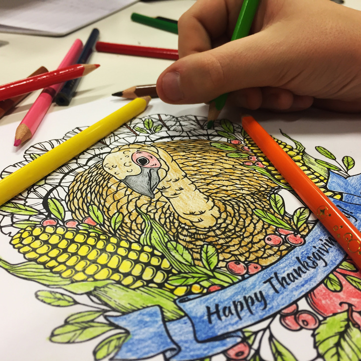 How about coloring some of our Thanksgiving pages? :-)