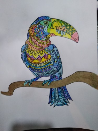 animals/coloring-birds/